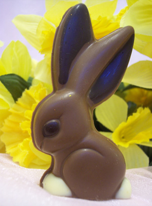 a picture of Junior, a milk chocolate bunny rabbit decorated with white and dark chocolate.
